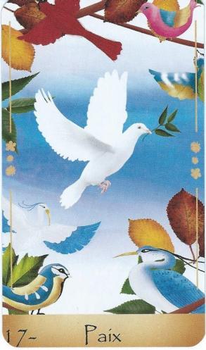 17 paix