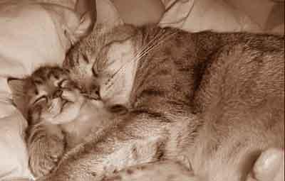 Bien dormir astuces