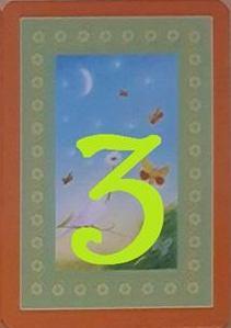Carte 12