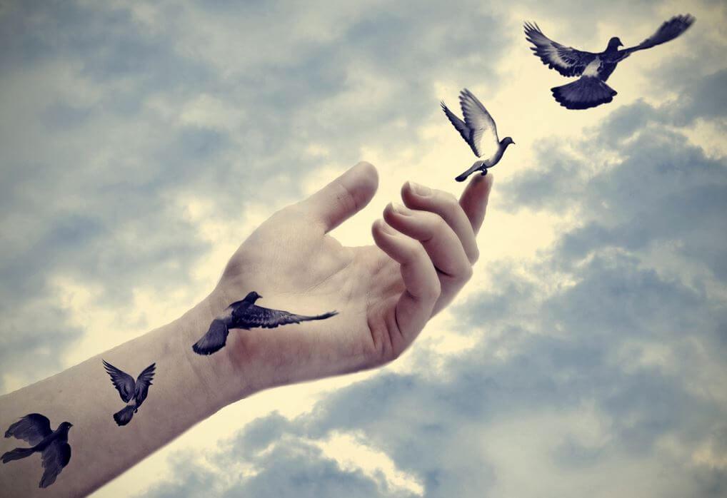 Oiseau main